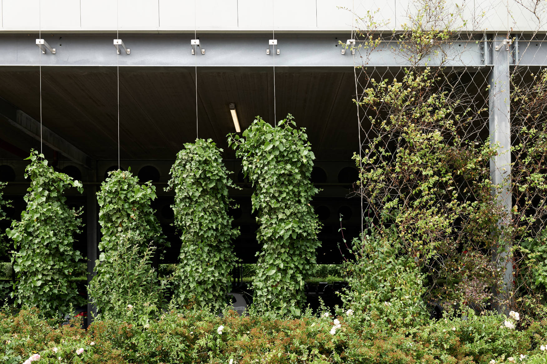 Cheshire Oaks Wire Rope Green Wall Jakob