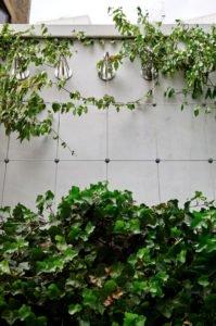 Jakob Green Wall Drapers Garden London