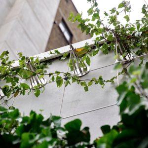 Drapers Garden Green Wall London