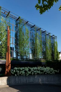 Green Wall columns shade a glass building