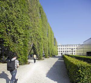 MFO Park Green Wall
