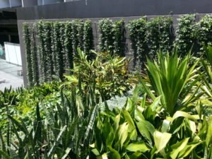 One Central Park Green Wall Sydney