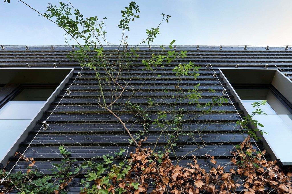 Residential Green Wall Jakob Webnet