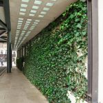 Side Walk Green Wall At One Hyde Park