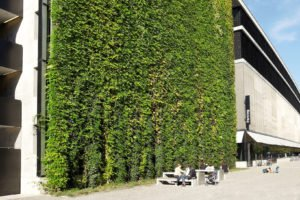 Sihlcity Green Wall