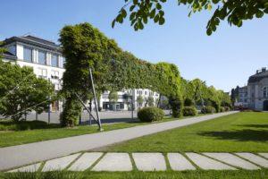 Sportplatz Green Wall