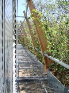 St Dominics Green Wall