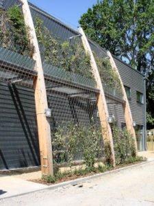 St. Dominics Green Wall