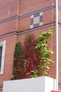 The Shires Green Wall Planted